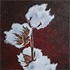 Katoenplantje - 2014 * Acryl op doek - 40x50
