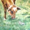 Konijn en Koe - 2006 * Aquarel op papier - 40x50